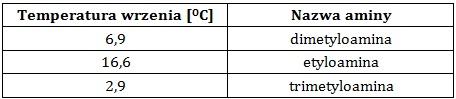 Ocena poprawności stwierdzeń dotyczących trzech amin