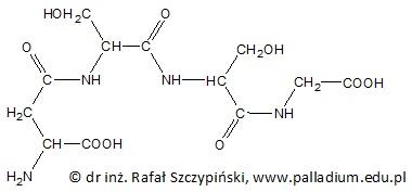 **Ocena poprawności zdań dotyczących cząsteczki narysowanego tetrapeptydu