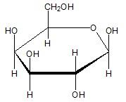 Rysowanie wzoru glikozydu będącego pochodną o-nitrofenolu