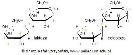 Obliczanie masy roztworu sacharydu zawierającego taką samą ilość cukru co roztwór o innym stężeniu