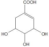 Ocena poprawności zdań dotyczących struktury cząsteczki kwasu szikimowego